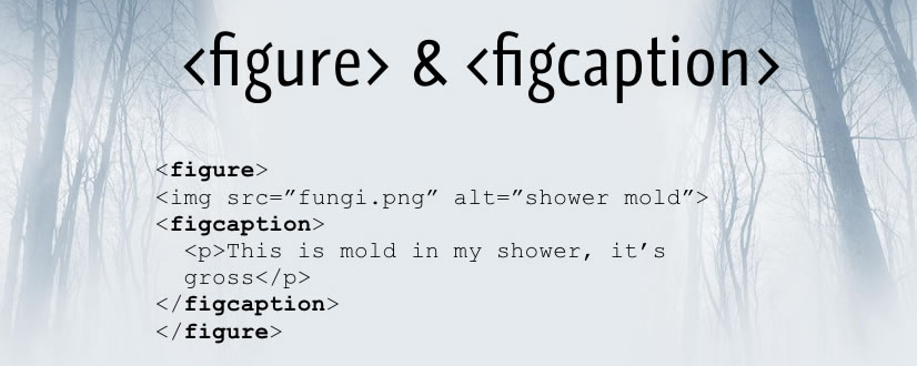 figure figcaption html 5