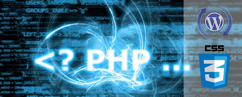 php css wp
